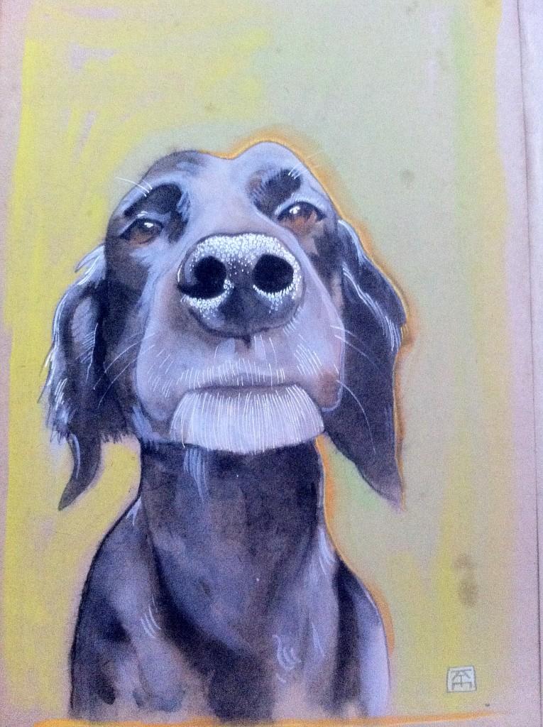 dog portrait wise labrador retriever